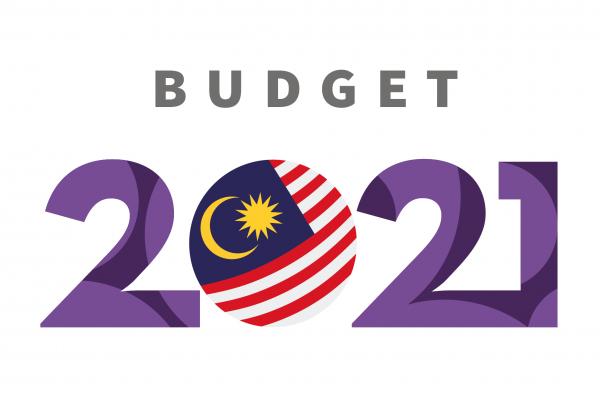 Budget 2021 Logo